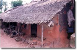Igbo Basics Culture